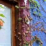 Colourful doorways, Le Plateau, Montreal