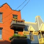 Sunlit houses, Le Plateau, Montreal