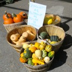 Pumpkins for Sale, Saint Hilaire, Quebec