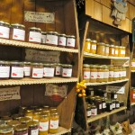 Local jams, Saint Hilaire, Quebec
