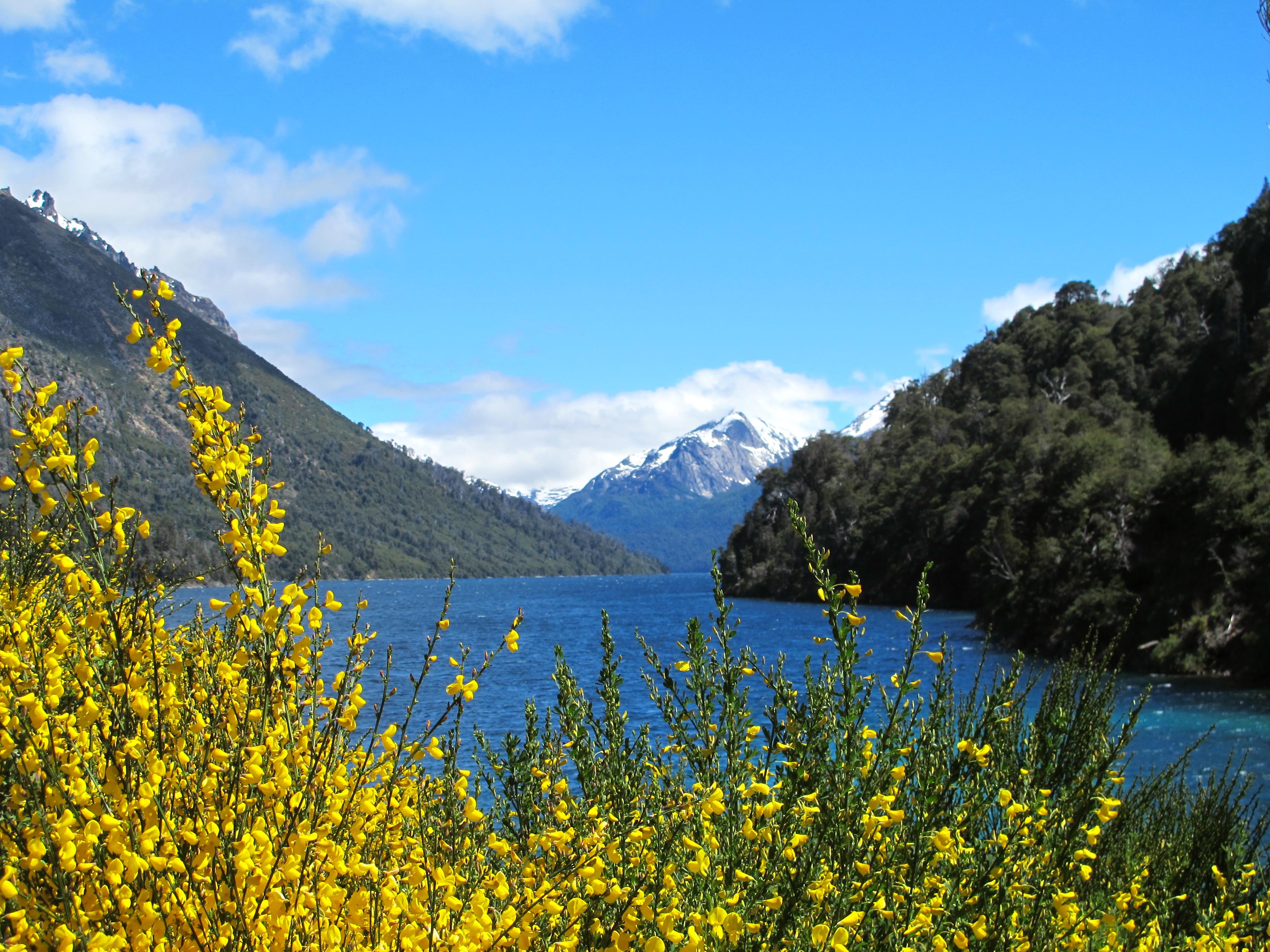 Lake Moreno, Bariloche Argentina