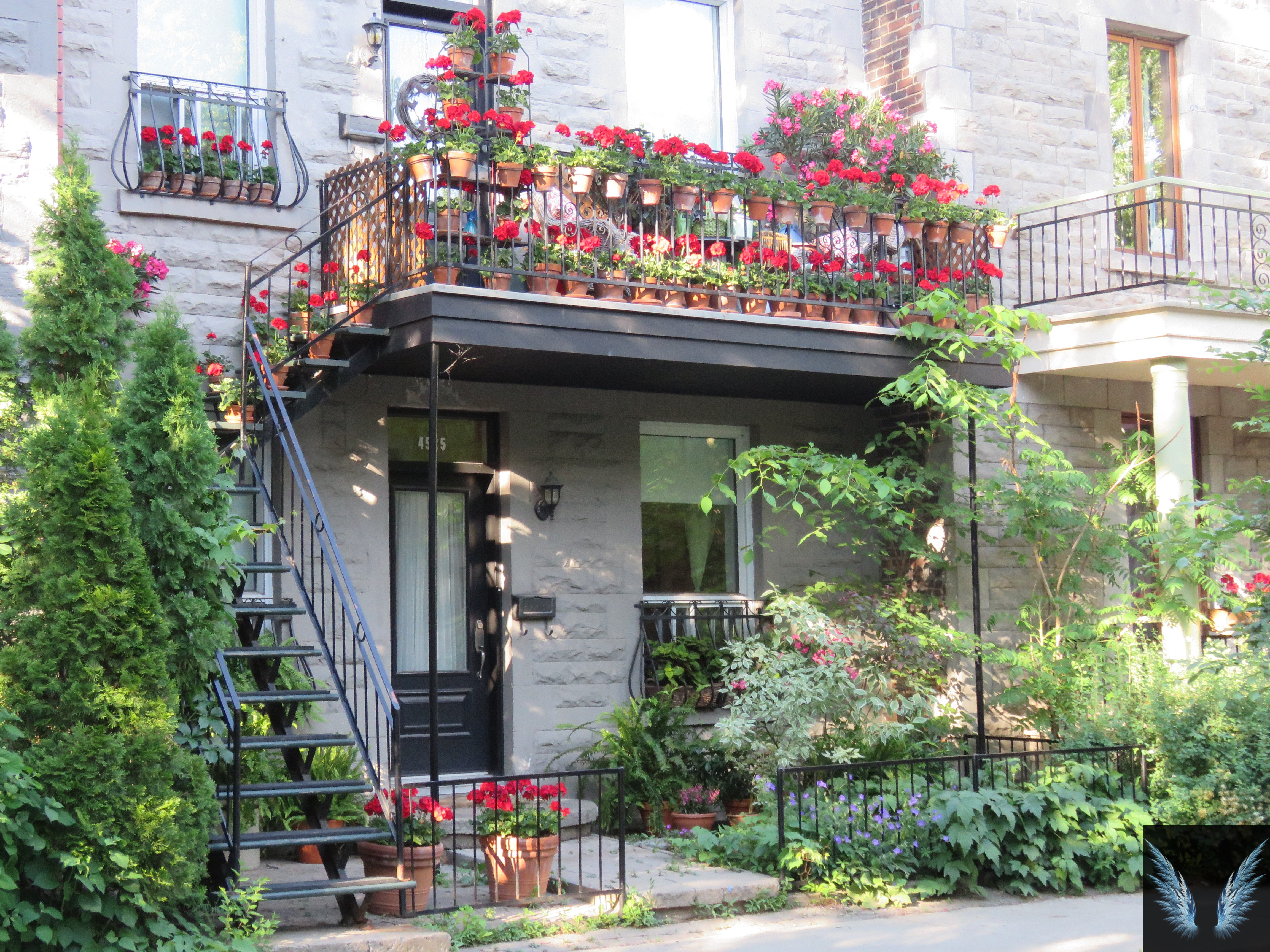 Surprising things about Montreal